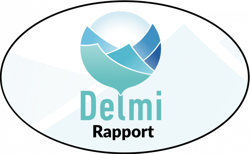 DRW analyserar Delmirapport om asylsökandes erfarenheter